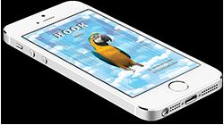Hook En iPhone 250
